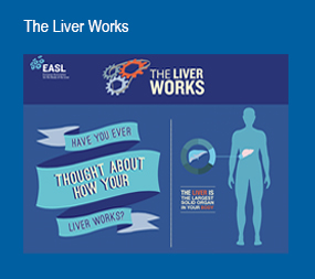 The Liver Works